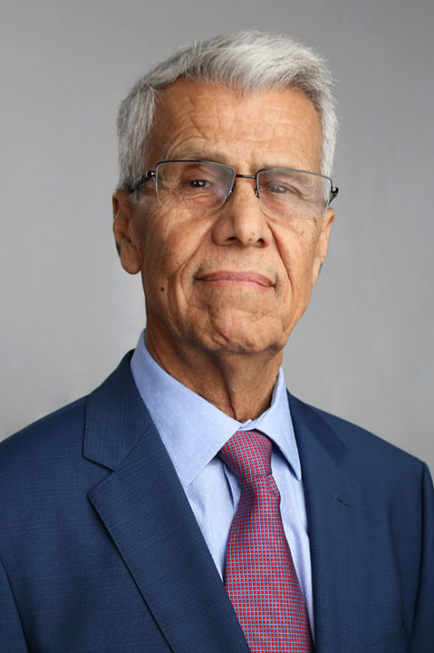 Mehdi Danesh