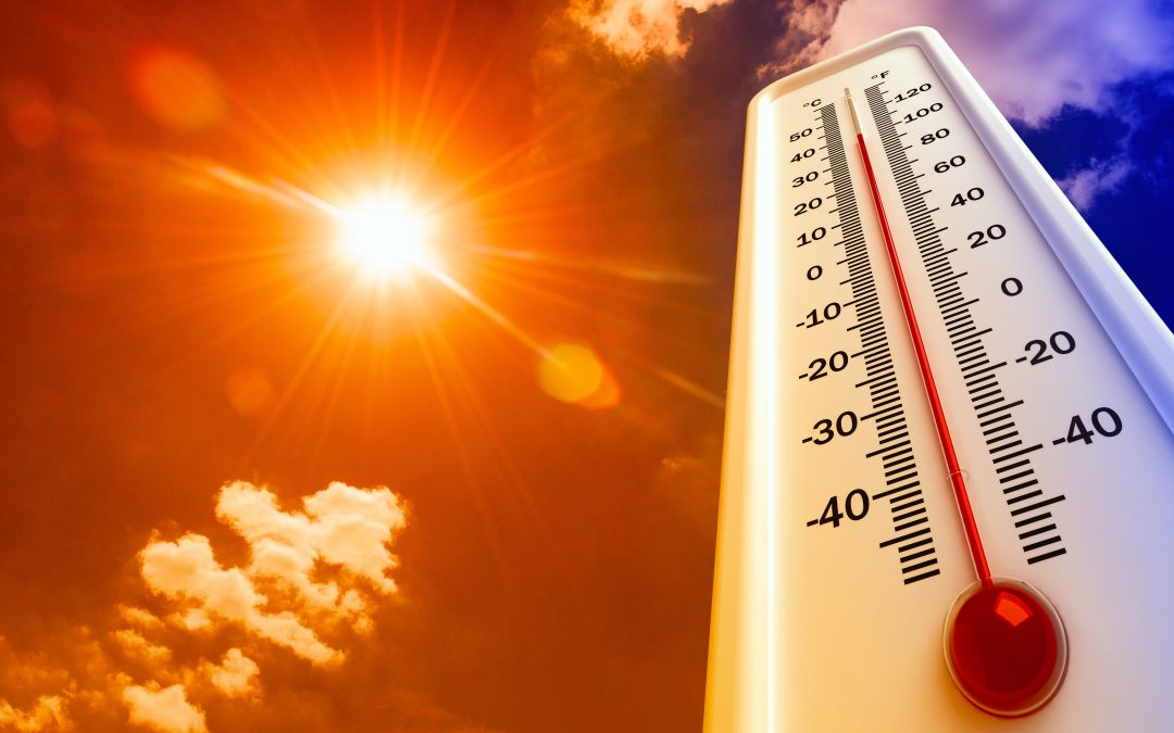 Beating the Summer Heat